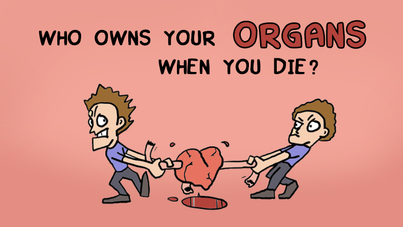 Who Owns Your Organs When You Die?